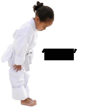 سبک های کاراته